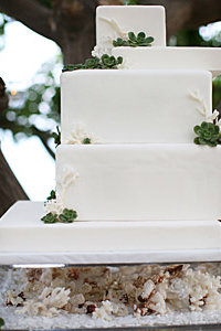 White Coral Geometric Fondant Wedding Cake.