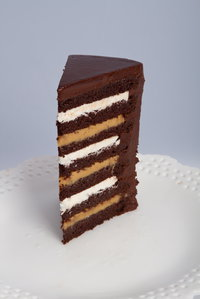7 Layer Chocolate Peanut Butter